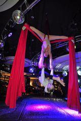 Школа Академия Pole Dance и цирковых искусств, фото №2